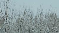 AcademeG Offroad Offroad - Offroad тест цепей-браслетов на снегу