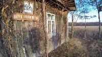 Alexander Kondrashov Все видео Заброшенная деревня. Музей. Смоленская область.