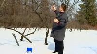 Дачные истории 1 сезон Приводим участок в порядок после зимы