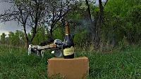 KREOSAN Все видео Что будет если засунуть шампанское в микроволновку