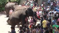 Мировая прогулка: Таиланд (Бангкок) Сезон-1 Серия 6
