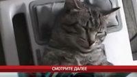 Улетное видео по-русски! 4 сезон 550 выпуск